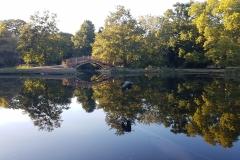Teich Rosental